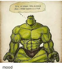 Hulk Smash Meme - hulk no smash hut no smash hvuk maybe sarsh a little mood meme on