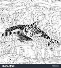 orca coloring pages eliolera com