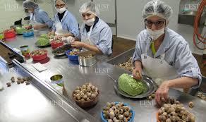 cuisiner les escargots de bourgogne région franche comté nos escargots de bourgogne sont polonais