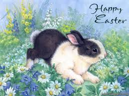 happy easter every bunny fascinating animals