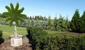 winter garden design ideas class with paul taylor farmington gardens