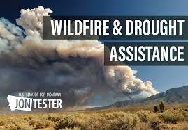 Wildfire Credit Union Locations by Tester Launches Portal To Assist Montanans Impacted By Wildfire