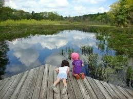 Massachusetts nature activities images 124 best kid friendly in the berkshires images jpg