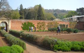 appeal to help save historic kitchen garden gardens illustrated