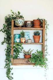 home decoration with plants wall ideas decorative metal wall plant hangers diy plant wall