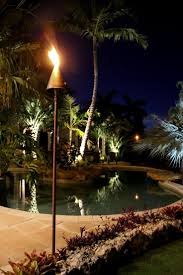 Pool Landscape Lighting Ideas by Best 25 Tropical Kitchen Torches Ideas Only On Pinterest