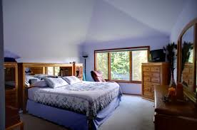 Master Bedroom Ideas Vaulted Ceiling Decorations Vaulted Ceiling Designs Bedroom With Ceiling Light