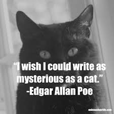 7 quotes from our favorite authors for national cat day unbound