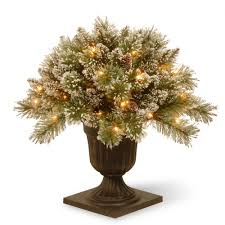 find all types christmas trees at home depot
