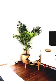 decorations home decor plants artificial for india trees