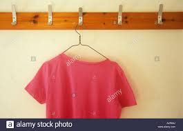 pink t shirt on wire hanger hanging from metal hook in row of pink t shirt on wire hanger hanging from metal hook in row of clothes hooks mounted on wood on cream wall