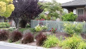 ca native garden parking strip makeovers