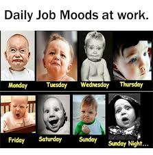 Work Meme Funny - 44 amusing wednesday work memes images pictures picsmine