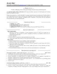 guaranteed resumes resume sles professional view