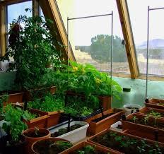 Indoor Vegetable Container Gardening - indoor organic gardening in your house wearefound home design