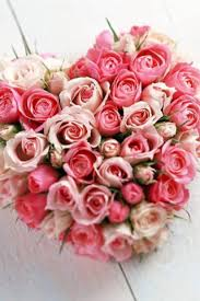 first come flowers posts from january 24 2014