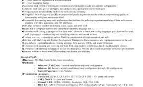 dazzling tags resume builder free word job search resume resume