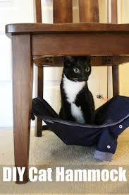 Cat Under Chair Pamper Your Pet With A Diy Cat Hammock Ad Petslovebeyond