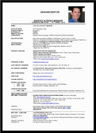 Best Project Manager Resume Sample by It Program Manager Resume India Virtren Com