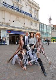 cats are purrrfect for summer season altblackpool