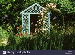 pink climbing roses over arch in country garden with painted