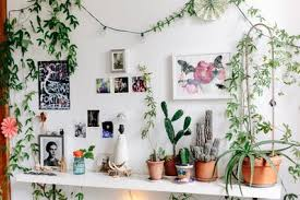 how to start an indoor house plant garden apartment therapy