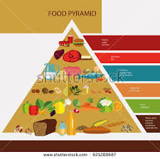 food pyramid principle healthy eating products stock illustration