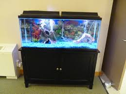 Designs For Homes Fish Tank Custom Fish Tank Designs For Freshwater Aquariums Modern
