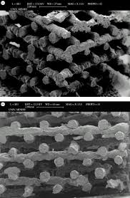 natural origin biodegradable systems in tissue engineering and