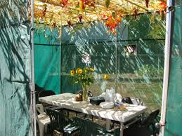 in season seasons did thanksgiving come from sukkot