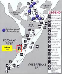 Maryland State Parks Map by National Aquarium Join Us On Sunday For A Turtle Release