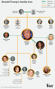 the entire donald family tree in one graphic vox