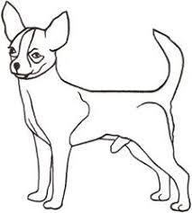 how to draw a chihuahua humor stuffing and random