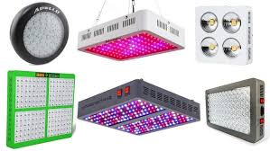 top 10 best led grow lights for growing cannabis heavy