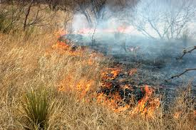 Wildfire Suppression Equipment by Wildfire Dangers Increase With High Winds Despite Recent Moisture