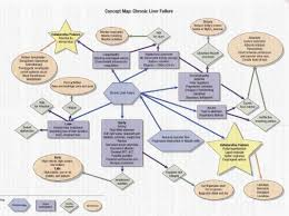 Nervous System Concept Map Http Fattyliverdisease Co Liver Failure Stages Html The Specific