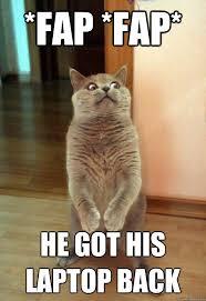 Meme Laptop - fap fap he got his laptop cat meme cat planet cat planet