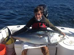 fishing charters cape cod bluefin tuna dragonfly sportfishing