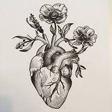 anatomically correct heart tattoo tattoo collections
