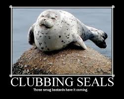 Baby Seal Meme - seal clubbing picture ebaum s world