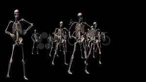 Dancing Halloween Skeleton by Video 13 Skeletons Dancing For Thirteen Seconds At A Halloween
