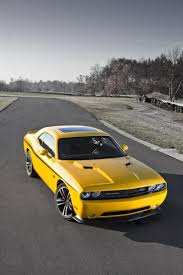 cars characters yellow best 25 yellow jacket bee ideas on pinterest yellow jackets