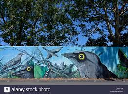 animal and bird mural on concrete flood protection wall in stock stock photo animal and bird mural on concrete flood protection wall in murwillumbah northern new south wales