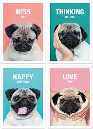 Birthday Pug Meme - set of 4 greeting cards because i pugs pinterest pug