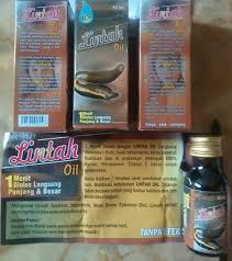 jual minyak lintah lintah oil new lintah oil wong pare tokopedia