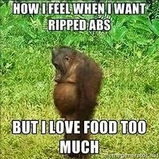 Diet Meme - 27 best diet memes images on pinterest funny pics funny stuff and