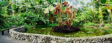 Kona Botanical Gardens Scenic Drive To A Botanical Garden On Big Island Hawaii