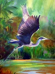 Heron Meaning by Great Blue Heron In Flight Watercolor By Kim Attwooll My