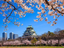 start planning the dates for japan u0027s cherry blossom season 2017