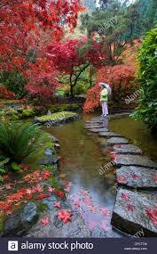 traditional bridgejapanese garden autumn kubota gardens